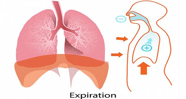 A Symptom That Indicates That Your Lungs Are Failing - Many Ignore It, But You Shouldn't