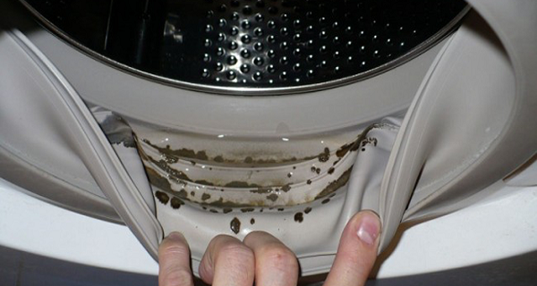 How to Remove Dangerous Mold and Smells from Your Washing Machine with 2 Ingredients