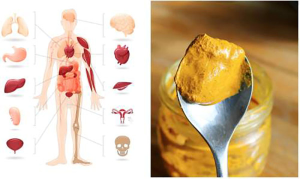 What-Happens-to-Your-Body-When-You-Eat-A-Teaspoon-of-Turmeric-Every-Day
