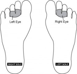 Reflexology Point for Eyes